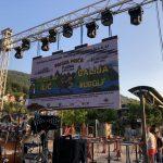 Заједничке манифестације/фестивали