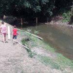 Цапе: Демонтажна брана за спас од врућина